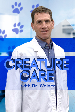 Creature Care